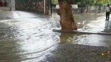 Rose-Hill : les eaux usées s'invitent dans la cour des habitants