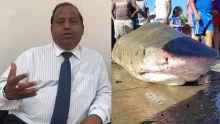 La présence de requins à Grand-Gaube inquiète le député Sudesh Rughoobur