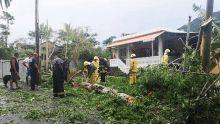 Sébastopol : une «tornade» sème la panique
