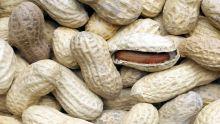Des marchands affirment qu'il y a une pénurie de pistaches