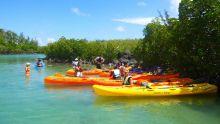 Activité nautique: petite virée en kayak