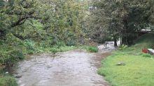 Audit des rivières et des cours d'eau