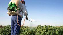 Des législations en préparation: haro sur l'abus de pesticides