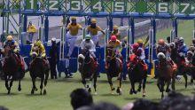 Hippisme : vingt autres chevaux de Simon Jones contrôlés par la GRA