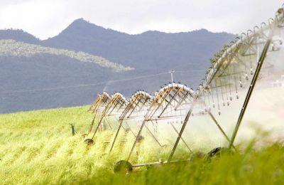 IBL détient, au 30 juin 2016, quelque 27,6% dans Alteo,  le premier groupe sucrier du pays.