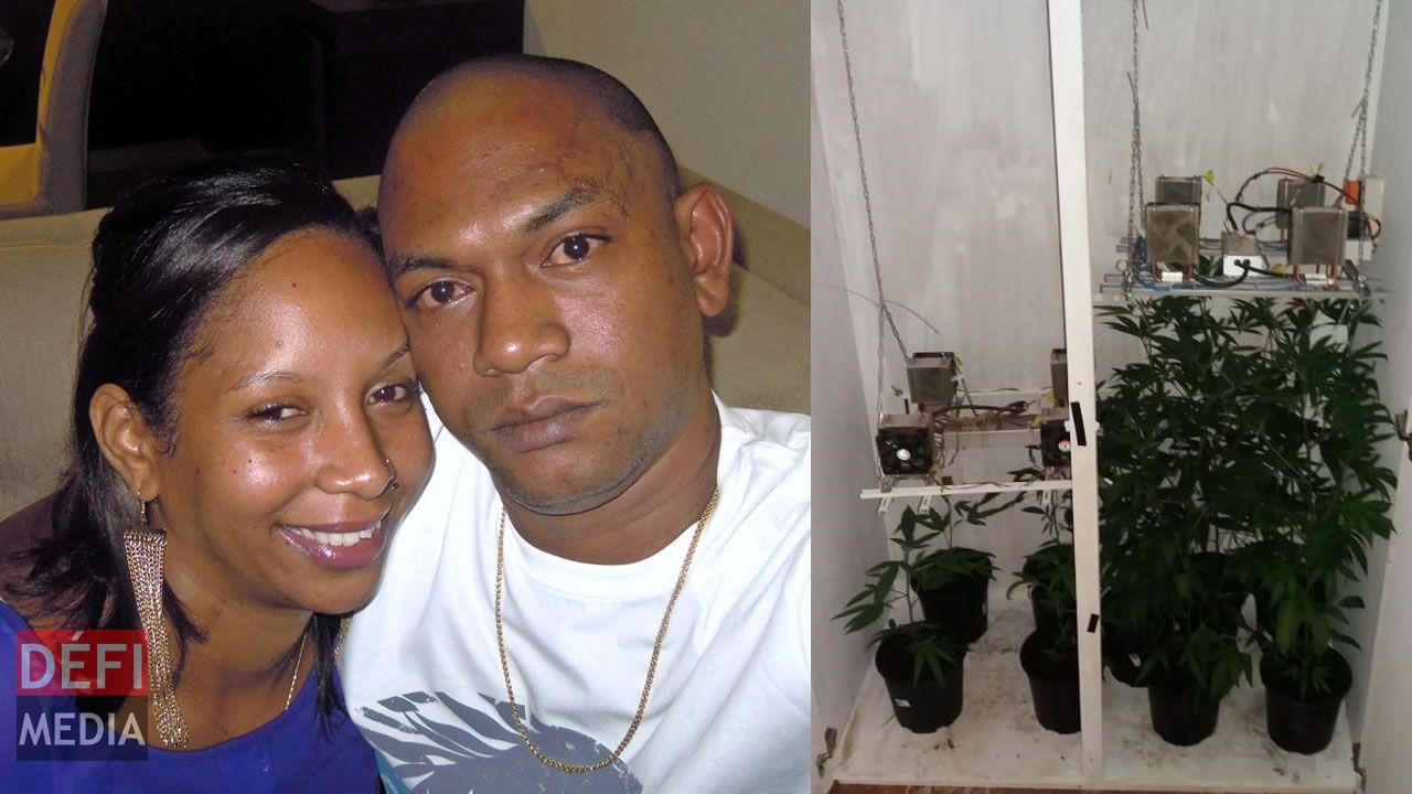 Importation de Rs 7,3 millions d'héroïne : un couple arrêté après quinze mois