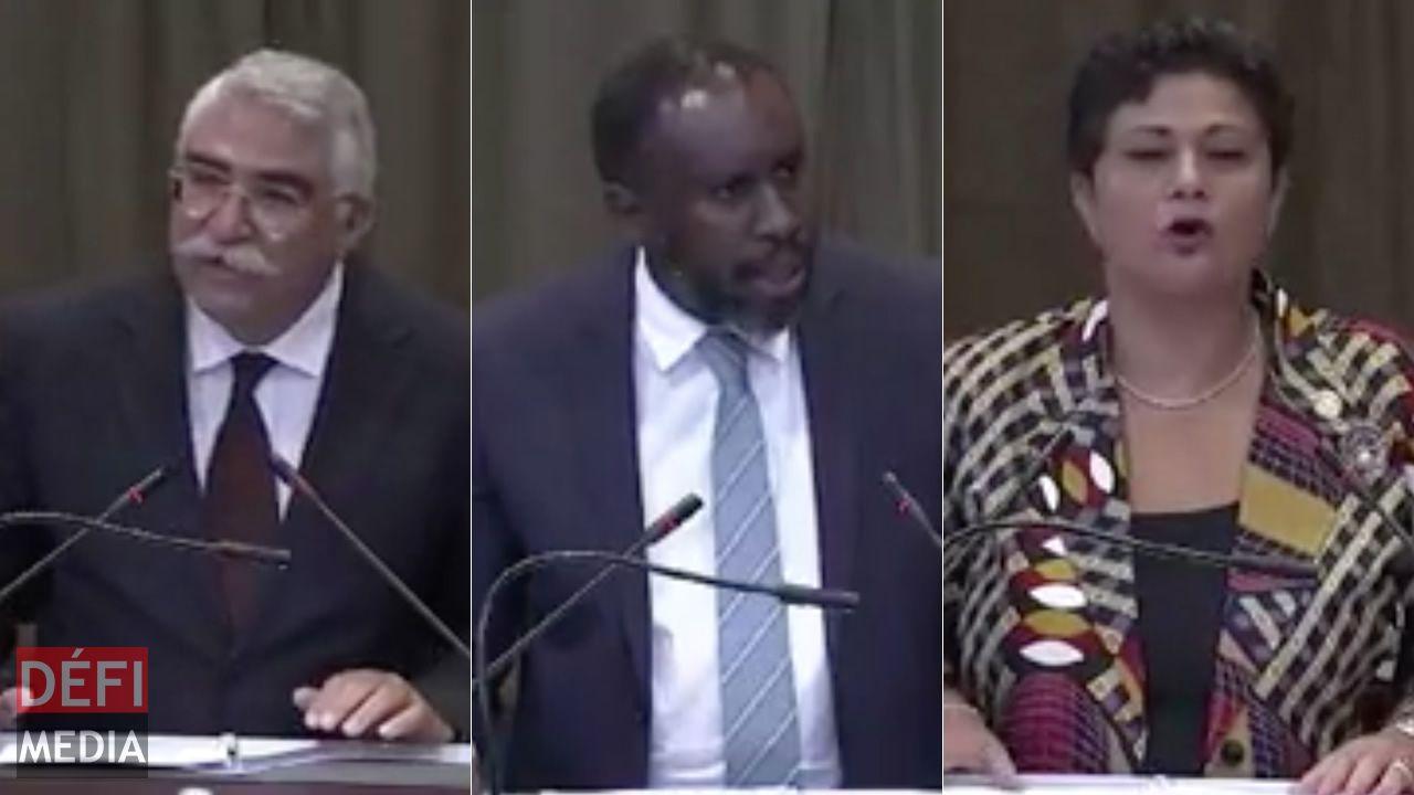 Dr Mohammed Gomaa, Le Prof. Makane Mbengue et Le Dr Namira Negm.