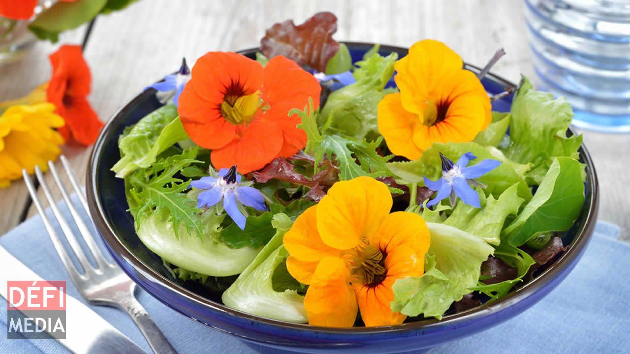 fleurs comestibles du jardin la table defimedia. Black Bedroom Furniture Sets. Home Design Ideas