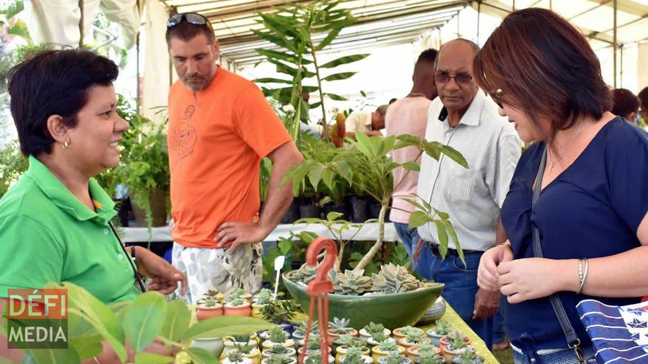 KR Plants