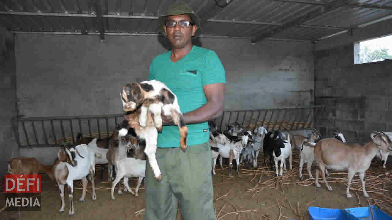 Mahmood Panchoo : « La situation des bouchers n'est guère encourageante. »