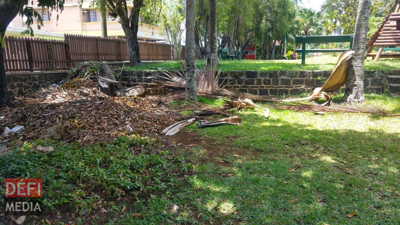 Entassement de feuilles ou de matériaux de construction dans l'enceinte du jardin.