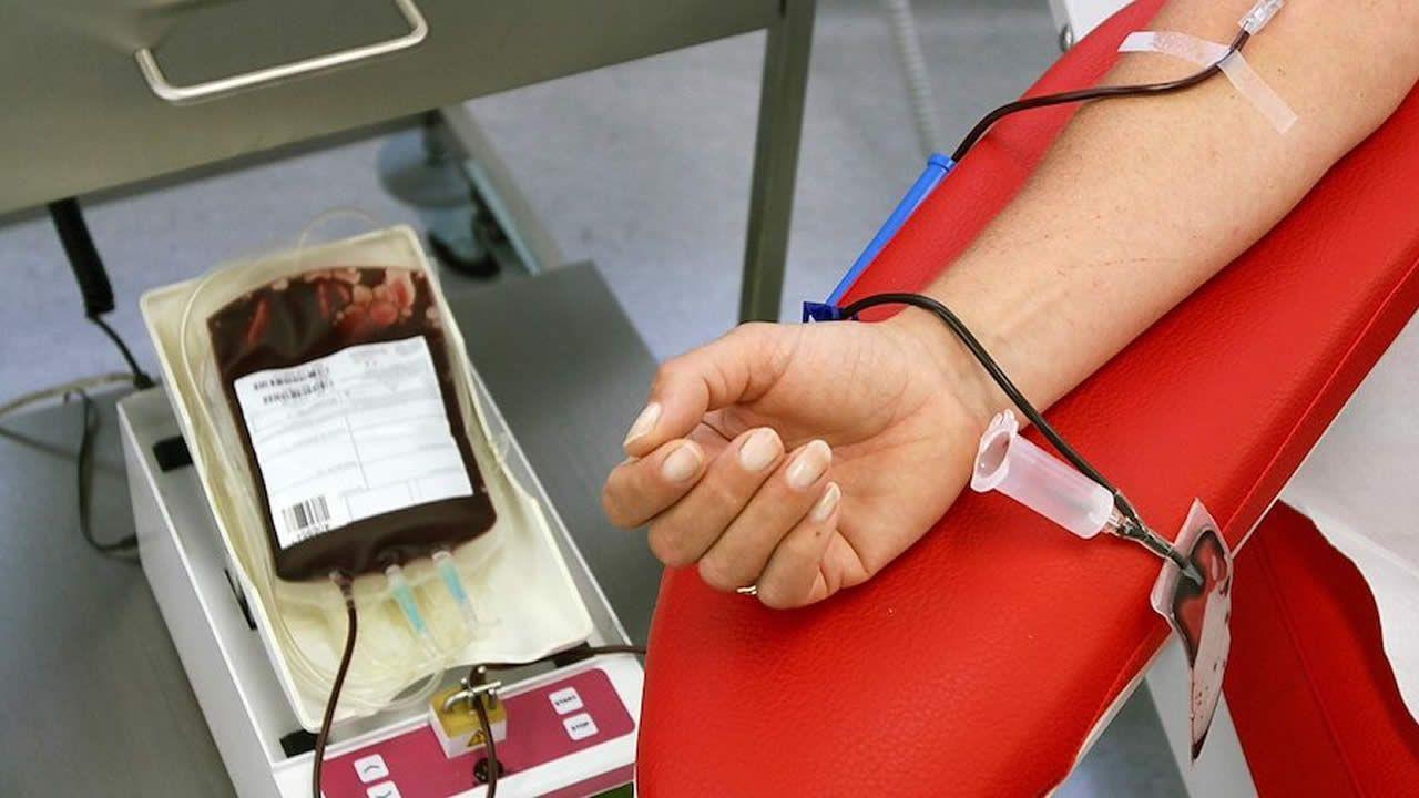Conseil des ministres :La National Blood Policy voit le jour