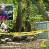 Meurtre à Sable-Noir :  Julio Vellien aurait été tué à cause d'une histoire de cœur