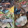 Beaux-Songes : trois armes à feu et des munitions retrouvées sur un terrain vague